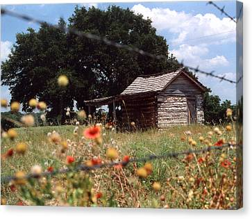 Cabin In The Wildflowers Canvas Print
