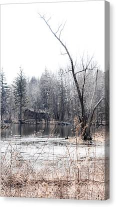 Cabin In The Woods Canvas Print by Julie Palencia