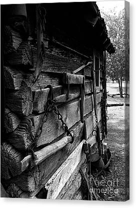 Cabin Wall II Canvas Print by Julie Dant