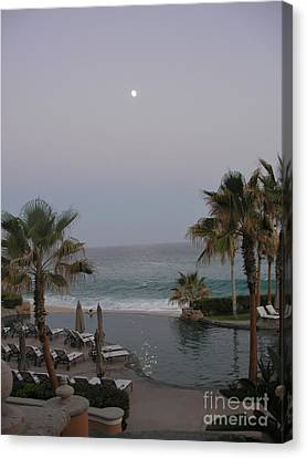 Canvas Print featuring the photograph Cabo Moonlight by Susan Garren