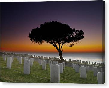 Cabrillo National Monument Cemetery Canvas Print by Larry Marshall