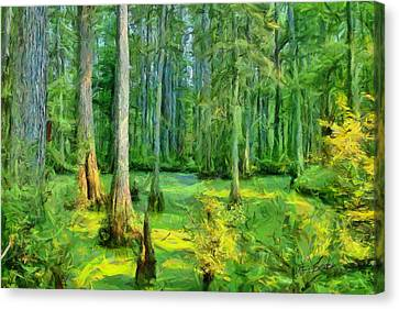 Cache River Swamp Canvas Print by Michael Flood