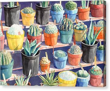 Cacti Chorusline Canvas Print by Lynda Hoffman-Snodgrass