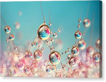 Canvas Print featuring the photograph Cactus Candy by Sharon Johnstone
