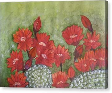 Cactus Flowers Canvas Print by Usha Rai