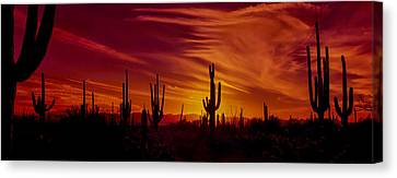 Saguaro Cactus Canvas Print - Cactus Glow by Mary Jo Allen