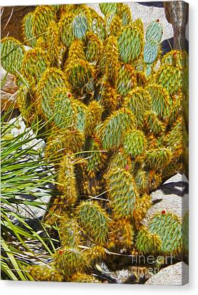 Cactus Canvas Print by Gregory Dyer