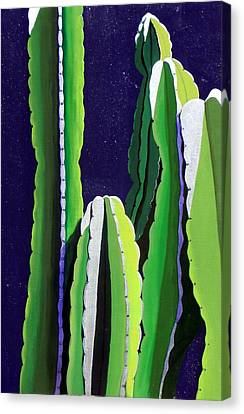 Cactus In The Desert Moonlight Canvas Print by Karyn Robinson