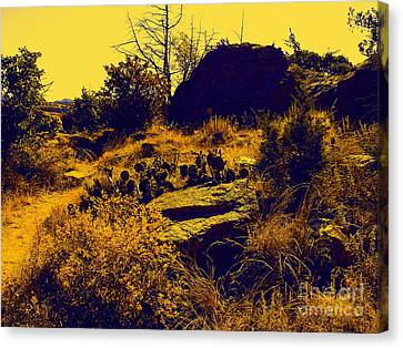 Cactus Canvas Print by Mickey Harkins