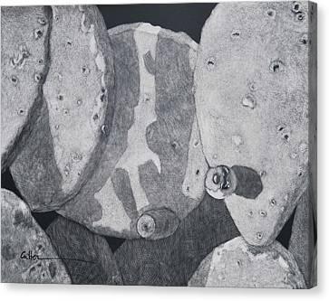 Cactus Tuna Canvas Print by Diane Cutter