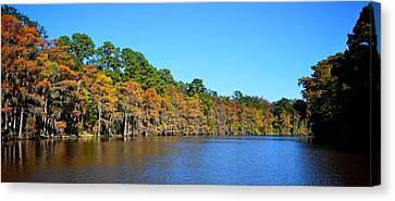 Caddo Lake 1 Canvas Print