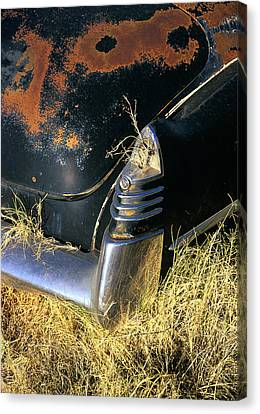 Caddy Tail Fin Canvas Print