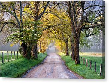 Country Lanes Canvas Print - Cades Cove Great Smoky Mountains National Park - Sparks Lane by Dave Allen