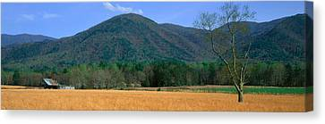 Tn Barn Canvas Print - Cades Cove Pioneer Settlement, Great by Panoramic Images