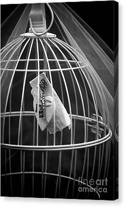 Cage Canvas Print by Svetlana Sewell