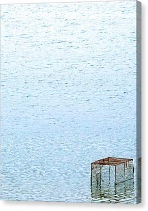 Caged Expanse Canvas Print by Kaleidoscopik Photography