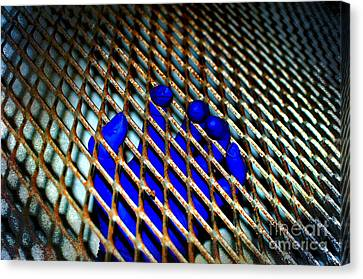 Caged Canvas Print by The Stone Age