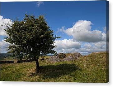 Cairn D On Carbane West, Loughcrew Canvas Print by Panoramic Images
