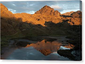 Cajas National Park (3000-4,400m Canvas Print by Pete Oxford