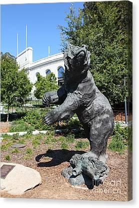 Cal Golden Bears California Memorial Stadium Berkeley California 5d24730 Canvas Print