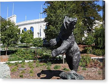 Cal Golden Bears California Memorial Stadium Berkeley California 5d24735 Canvas Print