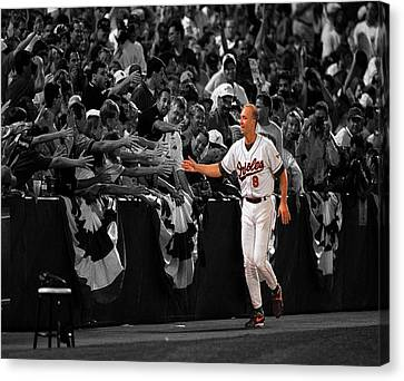Cal Ripken Canvas Print by Brian Reaves