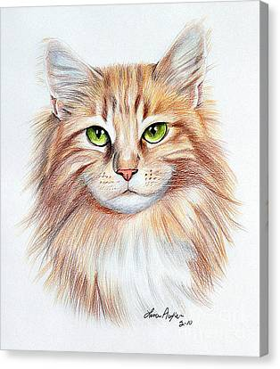 Calico Cat Canvas Print by Lena Auxier