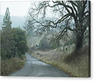 California Back Country Road Canvas Print by Judy  Johnson