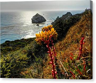 Big Sur Canvas Print - California - Big Sur 006 by Lance Vaughn