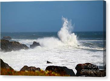 Canvas Print featuring the photograph California Coast4 by Theresa Ramos-DuVon