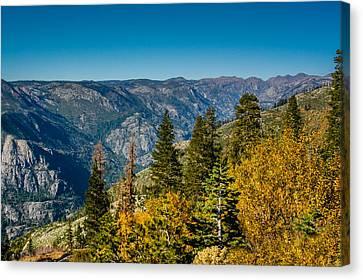 California Fall Canvas Print