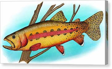 California Golden Trout Canvas Print by Roger Hall