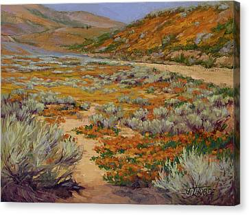 California Poppies Canvas Print by Jane Thorpe