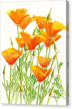 California Poppies Canvas Print by Sharon Freeman