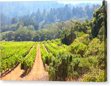 California Vineyard Wine Country 5d24518 Canvas Print by Wingsdomain Art and Photography