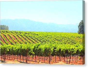 California Vineyard Wine Country 5d24623 Canvas Print by Wingsdomain Art and Photography