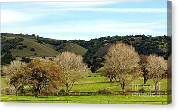 California Winter Landscape Canvas Print by Susan Wiedmann