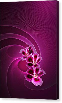 Canvas Print featuring the photograph Call Me Pink by Judy  Johnson