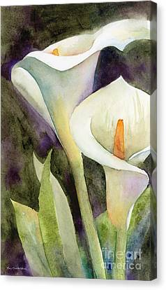 Calla Lilies Canvas Print by Amy Kirkpatrick