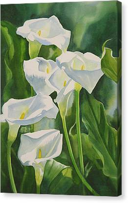 Calla Lilies Canvas Print by Sharon Freeman