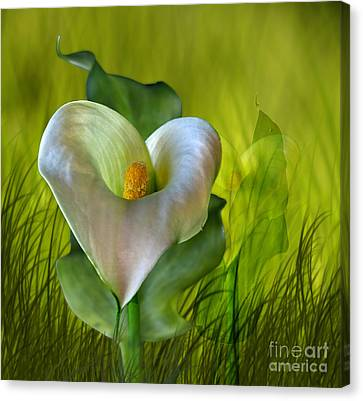 Canvas Print featuring the digital art Calla Lily Glow by Shirley Mangini