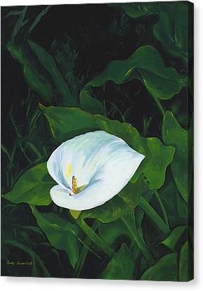 Calla Lily In The Garden Of Diego And Frida Canvas Print by Judy Swerlick