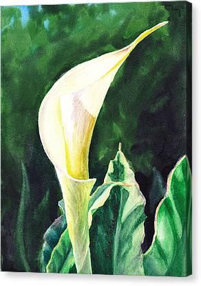 Calla Lily Canvas Print by Irina Sztukowski