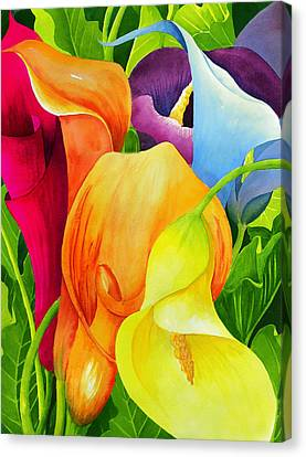 Purple Canvas Print - Calla Lily Rainbow by Janis Grau