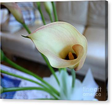 Canvas Print featuring the photograph Calla by Mariana Costa Weldon