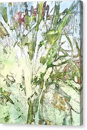 Callas Canvas Print by Jennifer Woodworth