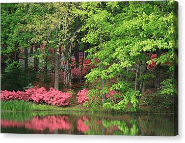 Canvas Print featuring the photograph Callaway Gardens 1 by Mountains to the Sea Photo