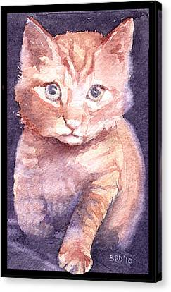 Callie's Cats Canvas Print by Sarah Buell  Dowling