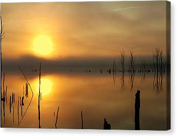 Calm At Dawn Canvas Print