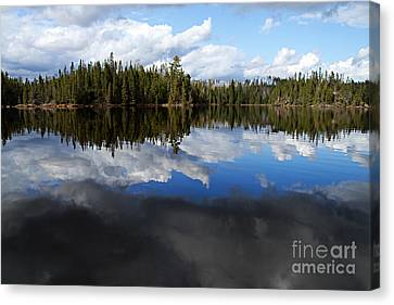 Calm Before The Storm Canvas Print by Larry Ricker